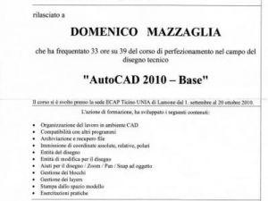Curriculum(3).jpg